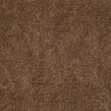 Anderson Tuftex SFA Gleeful Mocha Latte 00776_854SF