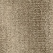 Anderson Tuftex Shaw Design Center Ridgemoor Neutral Taupe 00572_861SD