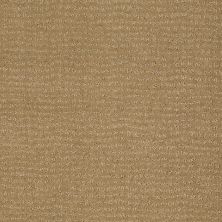Anderson Tuftex Simply Marvelous Sahara Sun 00273_863DF