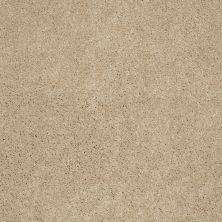 Anderson Tuftex Effortless Days Touch Of Tan 00173_865DF
