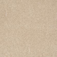 Anderson Tuftex Effortless Days Pacific Pearl 00181_865DF