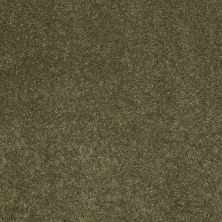 Anderson Tuftex Effortless Days New Willow 00335_865DF