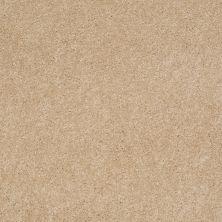 Anderson Tuftex SFA Beachton Nevada Sand 00162_865SF