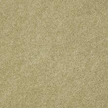 Anderson Tuftex SFA Beachton Sprout 00323_865SF