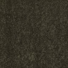 Anderson Tuftex SFA Beachton Parsley 00338_865SF