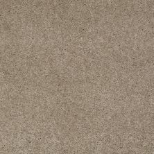 Anderson Tuftex Candor Driftwood 00753_866DF