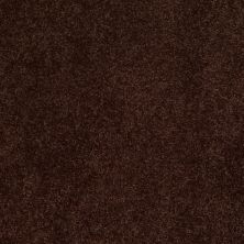 Anderson Tuftex Candor Chestnut 00778_866DF