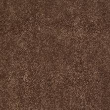 Anderson Tuftex Candor Hot Cocoa 00785_866DF