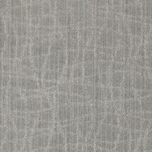Anderson Tuftex Naturally Yours Polished Silver 00542_869DF