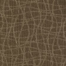 Anderson Tuftex Naturally Yours Urbana 00575_869DF