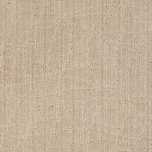 Anderson Tuftex Shaw Design Center Exclusive Style Birch 00112_869SD