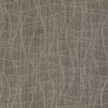 Anderson Tuftex Shaw Design Center Exclusive Style Pebble Walk 00555_869SD