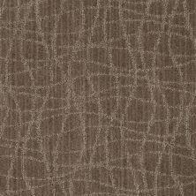 Anderson Tuftex Shaw Design Center Exclusive Style Stonework 00576_869SD
