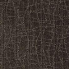 Anderson Tuftex Shaw Design Center Exclusive Style Lava 00578_869SD