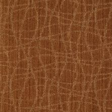 Anderson Tuftex Shaw Design Center Exclusive Style Melted Copper 00626_869SD