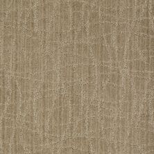 Anderson Tuftex Shaw Design Center Exclusive Style Chamomile 00733_869SD