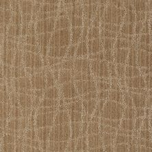 Anderson Tuftex Shaw Design Center Exclusive Style Fine Grain 00784_869SD