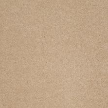 Anderson Tuftex SFA Sleek Silhouette Nevada Sand 00162_872SF