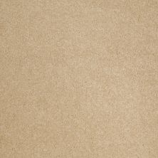 Anderson Tuftex SFA Sleek Silhouette Twinkle 00222_872SF