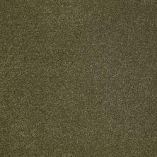 Anderson Tuftex SFA Sleek Silhouette New Willow 00335_872SF