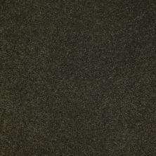 Anderson Tuftex SFA Sleek Silhouette Parsley 00338_872SF