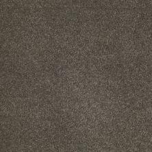 Anderson Tuftex SFA Sleek Silhouette Cityscape 00537_872SF