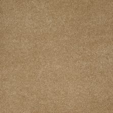 Anderson Tuftex SFA Sleek Silhouette Peanut Butter 00725_872SF