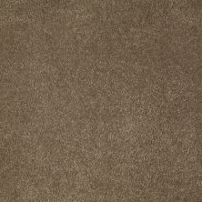 Anderson Tuftex SFA Sleek Silhouette Boardwalk 00755_872SF
