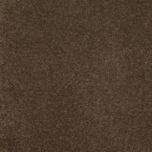 Anderson Tuftex SFA Sleek Silhouette River Rock 00758_872SF
