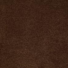 Anderson Tuftex SFA Sleek Silhouette Decaf 00776_872SF