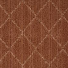 Anderson Tuftex SFA Shine Bright Brushed Clay 00685_874SF