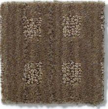 Shop Anderson Tuftex River Gates Lava 00578 875df Carpet Carpet Exchange