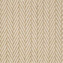 Anderson Tuftex Shaw Design Center Self Control Desert Tan 00274_877SD