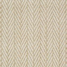 Anderson Tuftex Shaw Design Center Self Control Fine Grain 00712_877SD