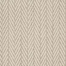 Anderson Tuftex Shaw Design Center Self Control Plaza Taupe 00752_877SD