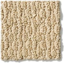 Anderson Tuftex SFA Charming Look Baked Beige 00173_883SF