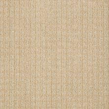 Anderson Tuftex Shaw Design Center Stylish Trend Semolina 00212_884SD