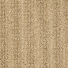 Anderson Tuftex Shaw Design Center Stylish Trend Macadamia 00232_884SD