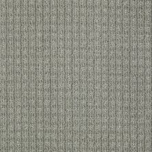 Anderson Tuftex Shaw Design Center Stylish Trend Slate 00344_884SD