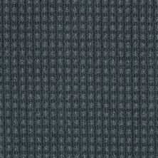 Anderson Tuftex Shaw Design Center Stylish Trend Indigo 00437_884SD