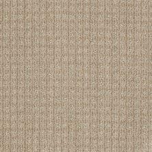 Anderson Tuftex Shaw Design Center Stylish Trend Agate 00712_884SD