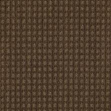 Anderson Tuftex Shaw Design Center Stylish Trend Vicuna 00736_884SD