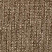 Anderson Tuftex Shaw Design Center Stylish Trend Sable 00754_884SD