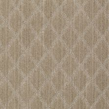 Anderson Tuftex Shaw Design Center Lyrical Cobblestone 00173_886SD