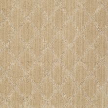 Anderson Tuftex Shaw Design Center Lyrical Midas Touch 00222_886SD