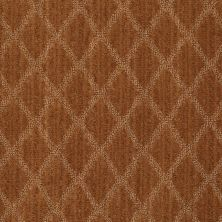 Anderson Tuftex Shaw Design Center Lyrical Brandy 00675_886SD