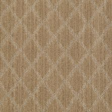 Anderson Tuftex Shaw Design Center Lyrical Lustrous Tan 00723_886SD