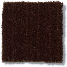 Anderson Tuftex SFA Riding High Catskill Brown 00777_887SF