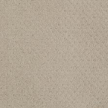 Anderson Tuftex SFA You Bring It Shy Beige 00112_899SF