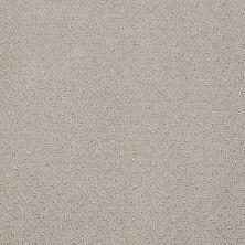 Anderson Tuftex SFA You Bring It Bit Of Gray 00552_899SF